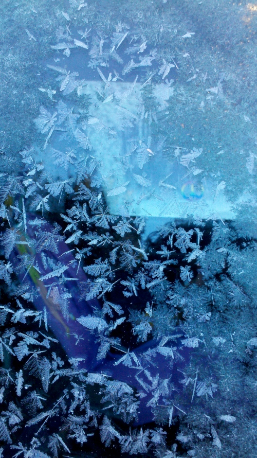 frost on the car window