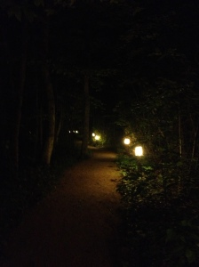 night time path at The Clearing
