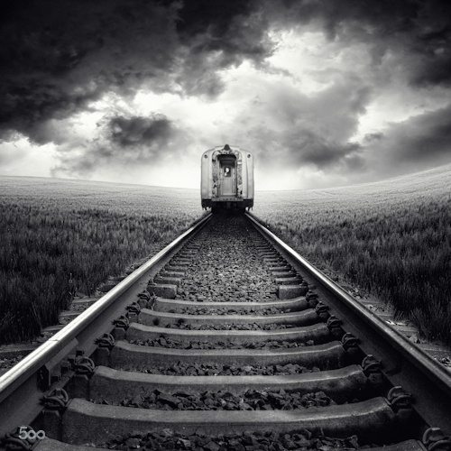 train on tracks