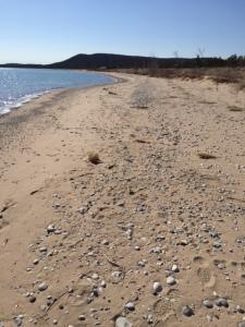 Glen Arbor Beach